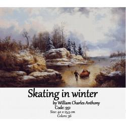 Skating in winter