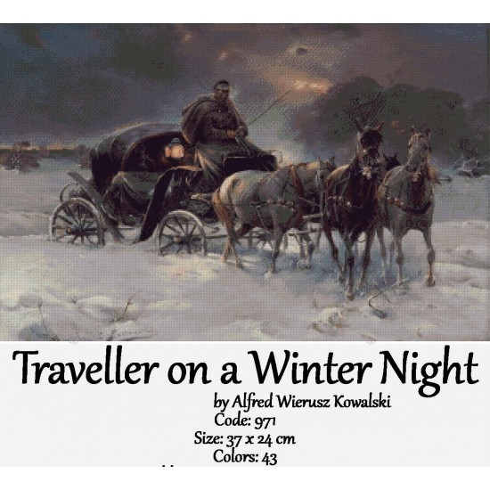 Traveller on a Winter Night