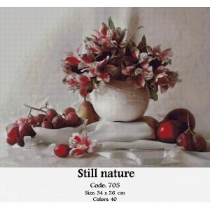 Still Nature