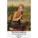 Counted cross stitch set – The Fern Gatherer